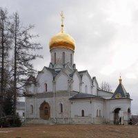 Собор Рождества Богородицы, Саввино-Сторожевском монастырь в Подмосковье. :: Евгений Седов