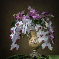 Натюрморт с букетом орхидей :: Ирина Приходько