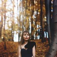 осень :: Катарина Берлинская