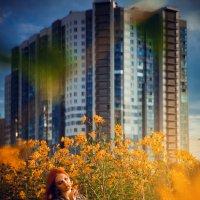 В грани города :: Катарина Берлинская