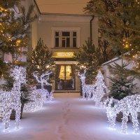 Со старым Новым Годом !! :: Светлана Мельник