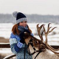 На встречу с северным оленем :: Валерий Гришин