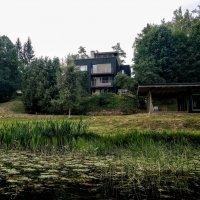 Дом в лесу :: Дмитрий