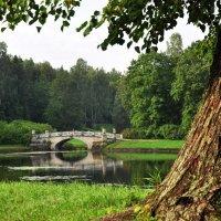 Висконтиев мост в августе :: Лариса Крышталь