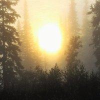 Большое утреннее солнце :: Сергей Чиняев
