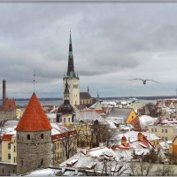 Таллинский привет. :: Vadim WadimS67