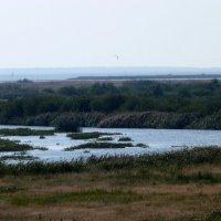река Скьерн в Дании :: Heinz Thorns