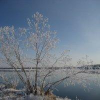 Ленская протока :: Anna Ivanova