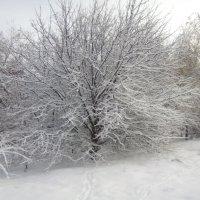зима :: Стас