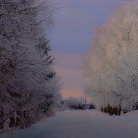 Вечерняя дорога... :: Юрий