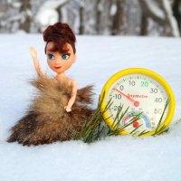 Чудесный день, морозец  лёгкий, пора идти нам снова погулять! :-) :: Андрей Заломленков