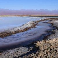 Лагуна де Цехар (lagunа de Cejar) :: Георгий А