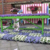 Мебель с цветами :: minchanka