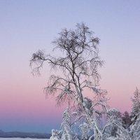 на закате :: Геннадий Лосев
