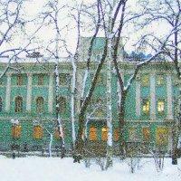 Зимой :: Лара Амелина