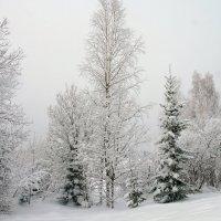 Падает снег... :: Галина Кан