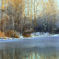 Река замерзать не хотела... :: Нэля Лысенко