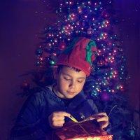 Новогодние праздники :: Елена Князева
