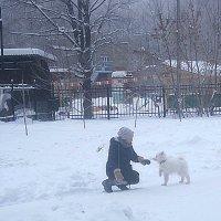 Прогулки зимой :: Елена Семигина