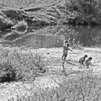 Деревенские дети на речке :: Екатерина Торганская