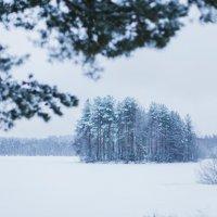 Холод льда :: Анастасия Володина