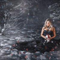 Зимние грезы :: Елена Круглова