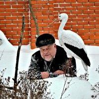 Я, аист и январь. :: Михаил Столяров