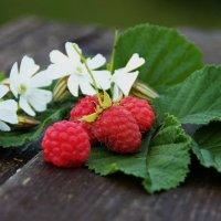 Сладкая летняя ягодка :: Татьянка *