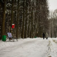 Прогулка :: Андрей Зарубин