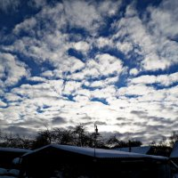 Мороз и солнце :: Шура Еремеева