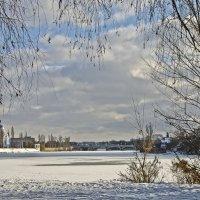 Мороз и солнце :: Ольга Винницкая (Olenka)