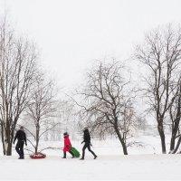 Оптимистичная зима :: Татьяна Копосова