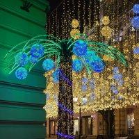 Тропики в Новогодней Москве :: Павел