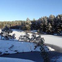 Скандинавская зима :: Alm Lana
