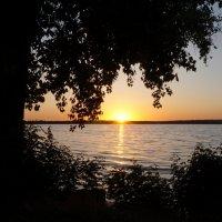 Вечер у реки :: Анна Васильева (Anna-82V)