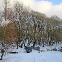Зимой в парке :: Ольга Довженко