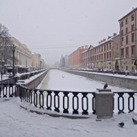 в снежной пелене :: Елена