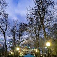 Тёплый вечер в январе :: Валерий Ткаченко