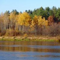 Осень на реке( октябрь) :: Натала ***