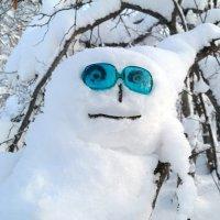 Всем хорошего зимнего настроения!  :-) :: Андрей Заломленков