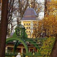 Летний сад... осенью... :: Юрий Куликов