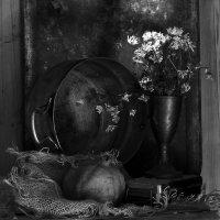 Натюрморт с сухими ромашками и гранатом :: Nika Polskaya