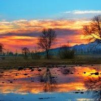 зимний закат после дождей :: Elena Wymann