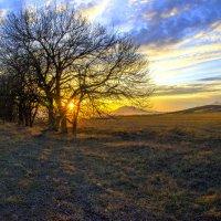 Крещенский закат.. :: ФотоЛюбка *
