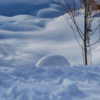 Чистый снег :: Натали Зимина