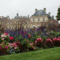 Luxembourg  garden :: Jerzy Hermanowicz