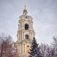 Колокольня с храмом преподобного Сергия Радонежского :: anderson2706
