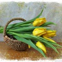 Тюльпаны в корзинке :: Nina Yudicheva