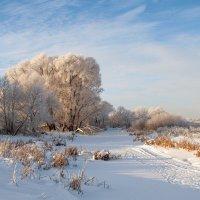 Мороз и солнце :: Сергей Михайлович
