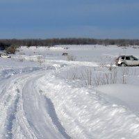 Зимой на Вазузе. :: Ольга Довженко